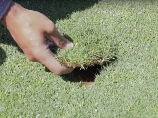 Reglas de Etiqueta – Cómo reponer bien las chuletas en el campo de golf