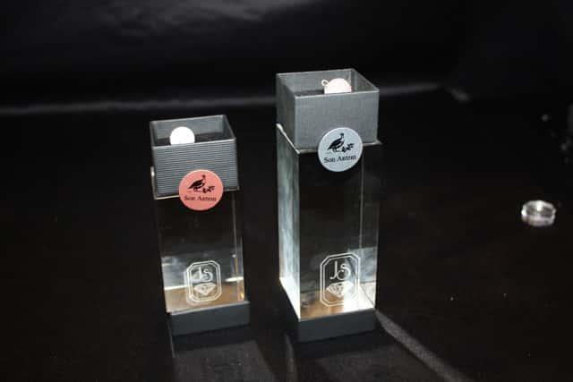 JS-SWING-LINE-Trofeos-de-autor