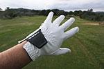 GUÍA DE GUANTES – Inesis Golf, incluyendo el guante de piel de Cabretta a un precio increíble